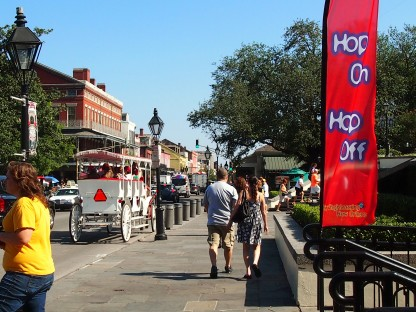 New Orleans City Sightseeing Tour Flag